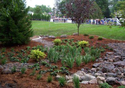 Landscapes & Plantings